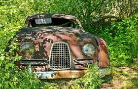 تبدیل شدن قبرستان خودروها به یک باغچه زیبا + فیلم