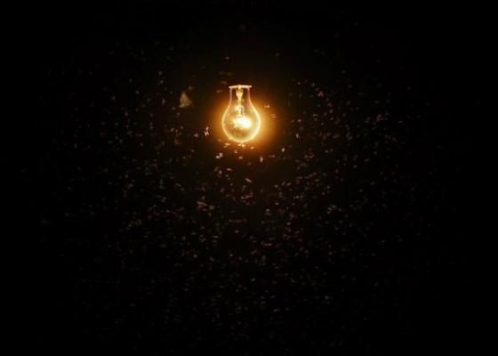 شب های روشن، بلای جان حشرات در شهرها